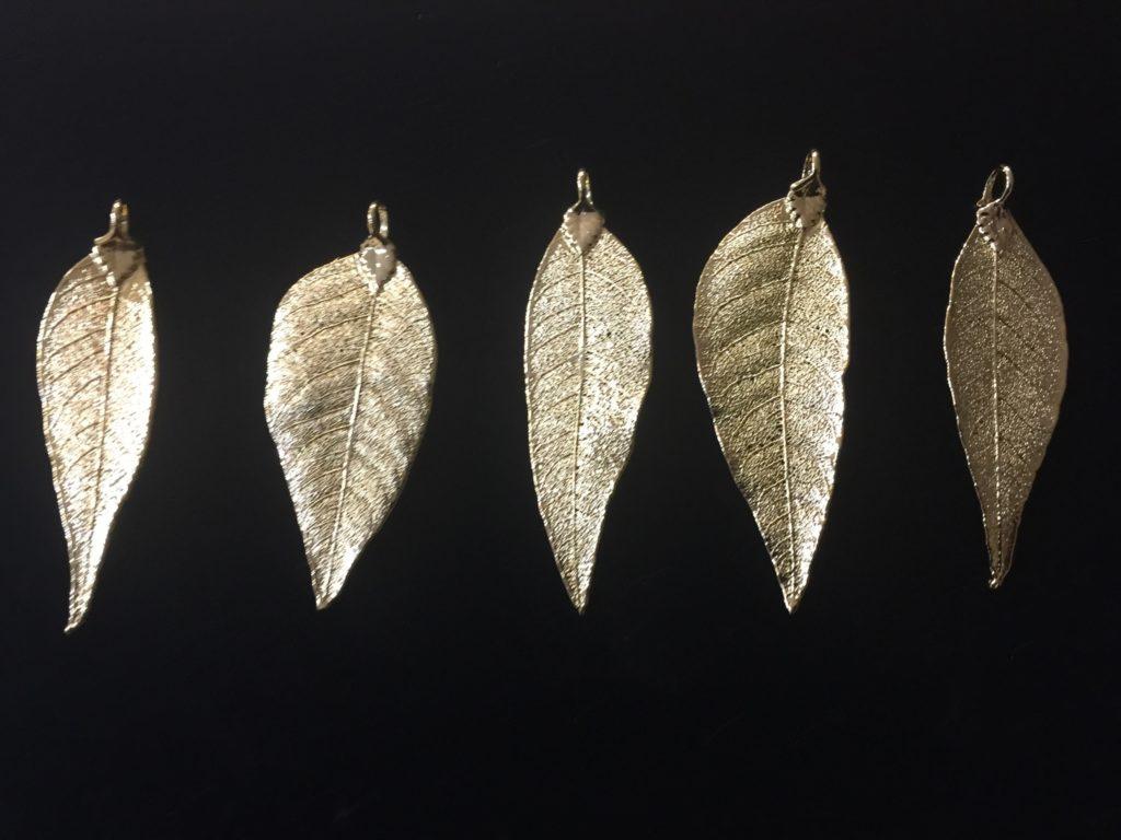Pistacio Leaves